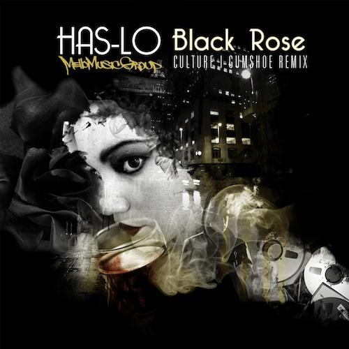 has-lo-black_rose